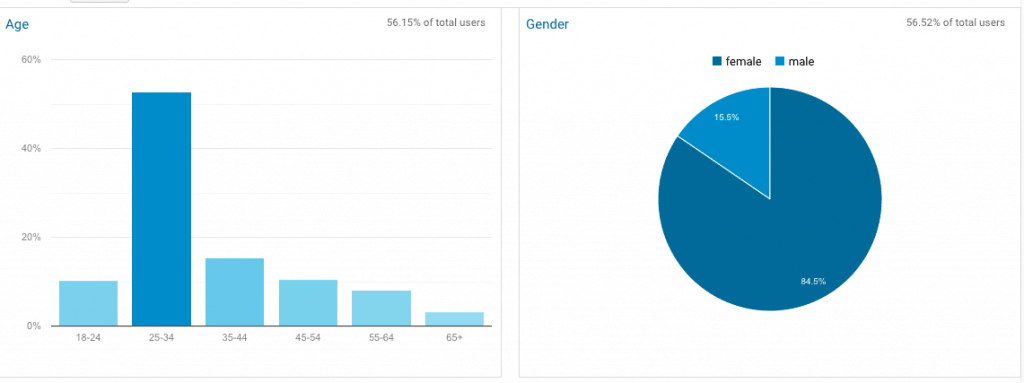 Google Analytics Demographic screenshot